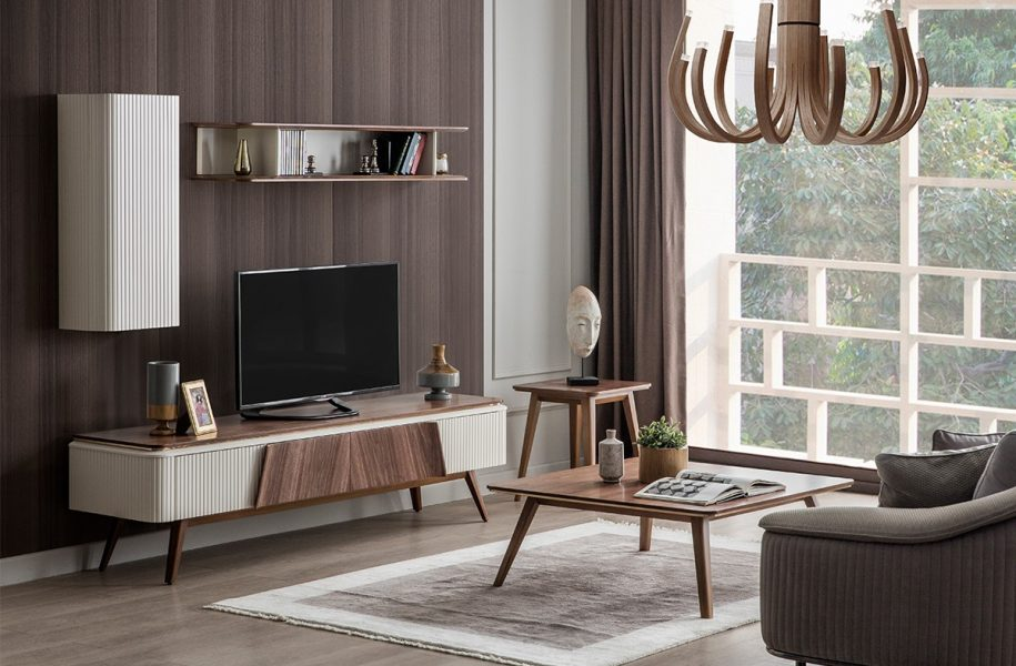 Dexterous & Modern TV Unit